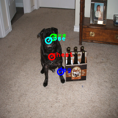 2010_005419-dog_0_ppm10.png