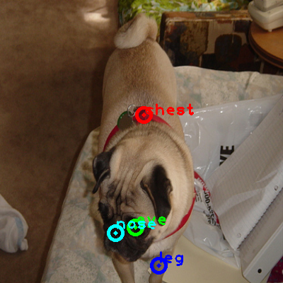 2010_005561-dog_0_ppm10.png