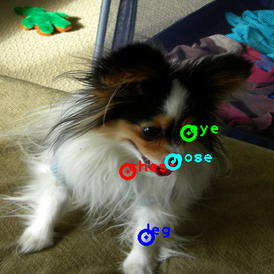 2010_005665-dog_0_ppm10.png