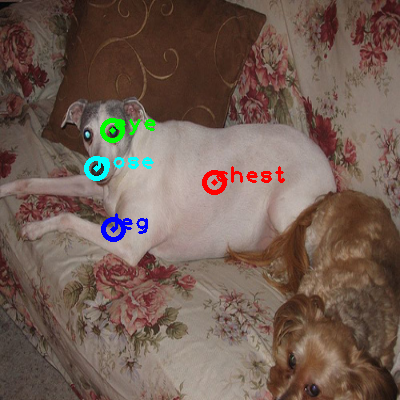 2010_006086-dog_0_ppm10.png