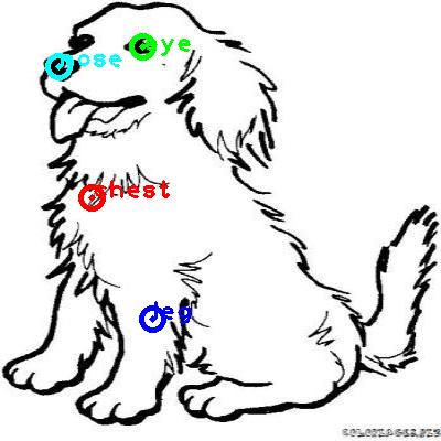 dog_0001_dipart10.png