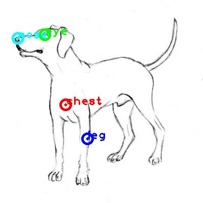 dog_0003_dipart10.png