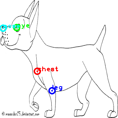 dog_0004_dipart10.png