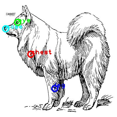 dog_0010_dipart10.png