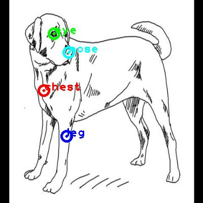 dog_0013_dipart10.png