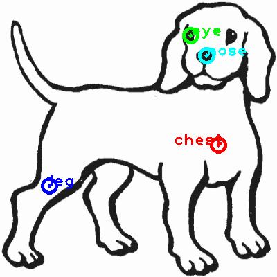 dog_0017_dipart10.png