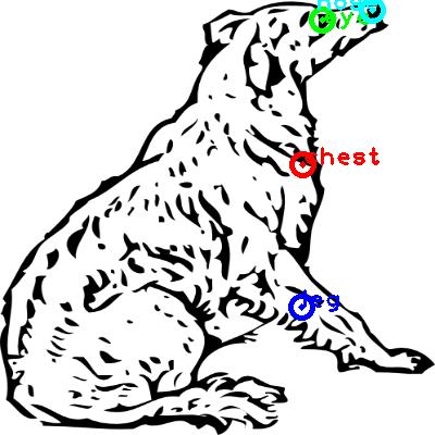 dog_0018_dipart10.png