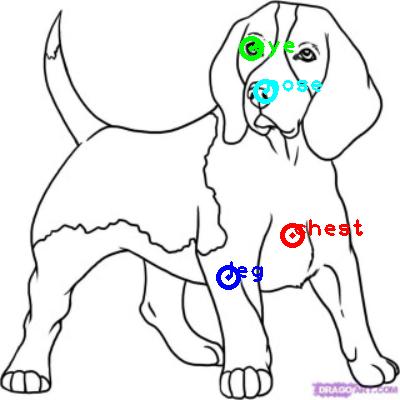 dog_0019_dipart10.png