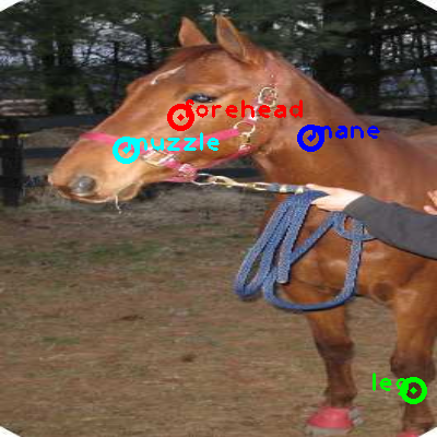 2008_000119-horse_0_ppm10.png