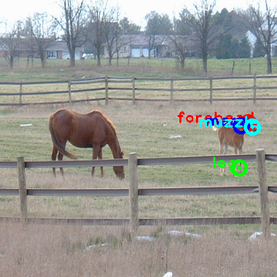 2008_000219-horse_0_ppm10.png