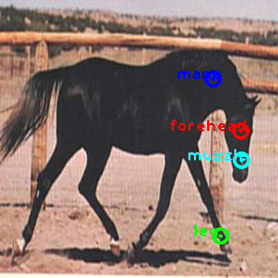 2008_000428-horse_0_ppm10.png
