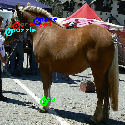 2008_001171-horse_0_ppm10.png