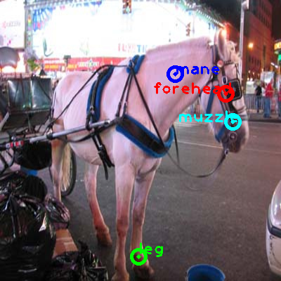 2008_001278-horse_0_ppm10.png