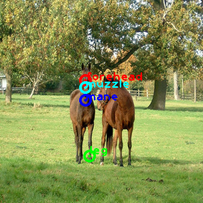 2008_002338-horse_0_ppm10.png