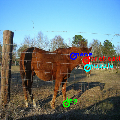 2008_003782-horse_0_ppm10.png