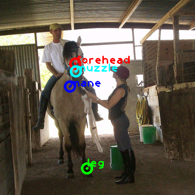2008_004533-horse_0_ppm10.png