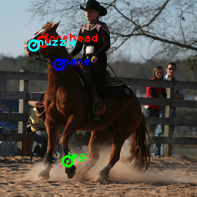 2008_005365-horse_0_ppm10.png