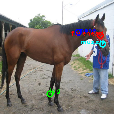 2008_005485-horse_0_ppm10.png