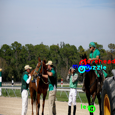 2008_005582-horse_0_ppm10.png