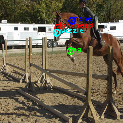 2008_005934-horse_0_ppm10.png