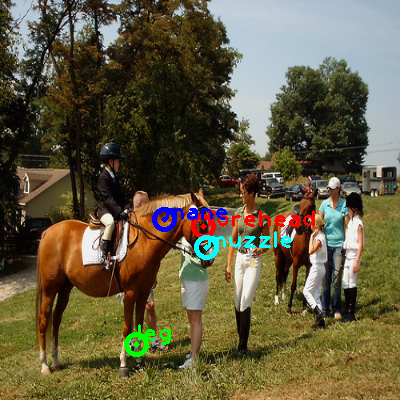 2008_006087-horse_0_ppm10.png