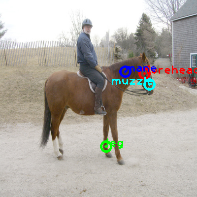 2008_006758-horse_0_ppm10.png