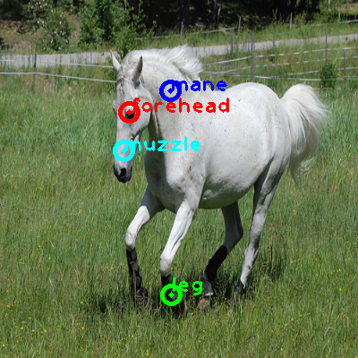 2008_008193-horse_0_ppm10.png