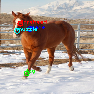 2009_000068-horse_0_ppm10.png