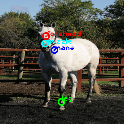 2009_000100-horse_0_ppm10.png