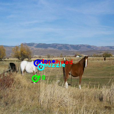 2009_001184-horse_0_ppm10.png