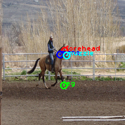 2009_001890-horse_0_ppm10.png