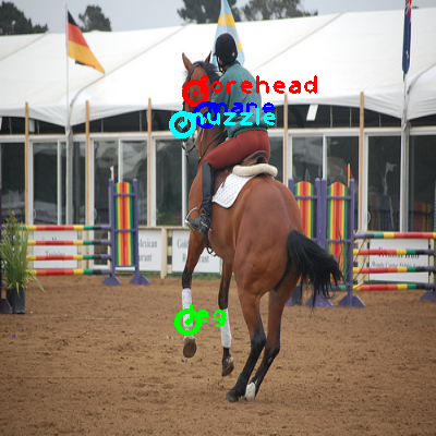 2009_003294-horse_0_ppm10.png