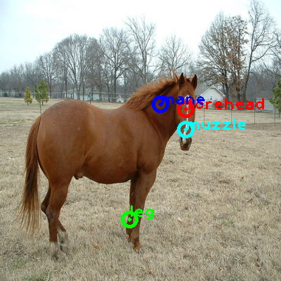 2009_003565-horse_0_ppm10.png
