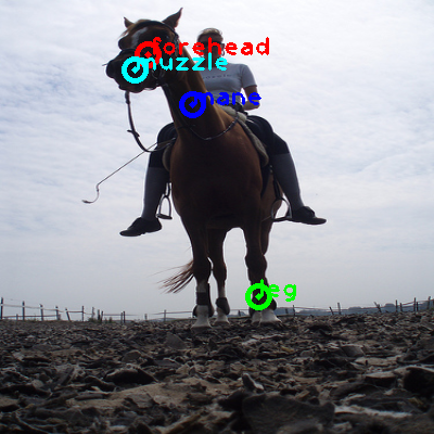 2009_003637-horse_0_ppm10.png