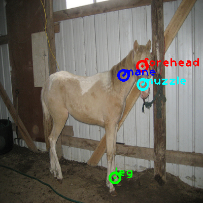 2009_004058-horse_0_ppm10.png