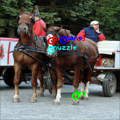 2009_005269-horse_0_ppm10.png