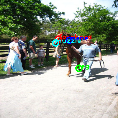 2010_000095-horse_0_ppm10.png