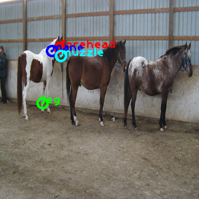 2010_000413-horse_0_ppm10.png