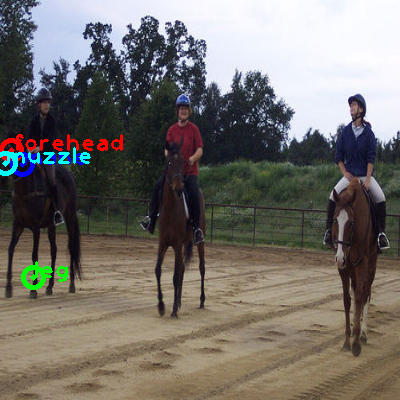 2010_000717-horse_0_ppm10.png