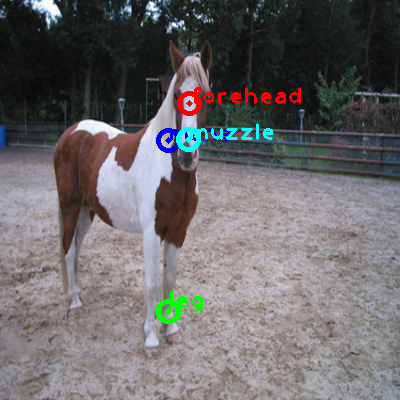 2010_002459-horse_0_ppm10.png