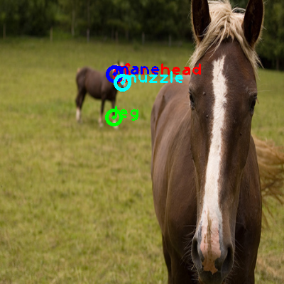 2010_002734-horse_0_ppm10.png