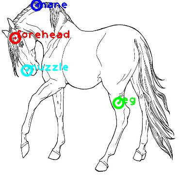 horse_0001_dipart10.png
