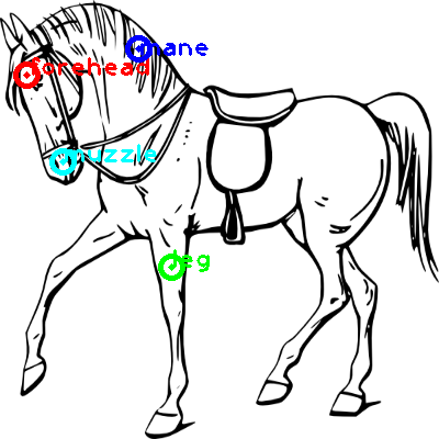 horse_0002_dipart10.png