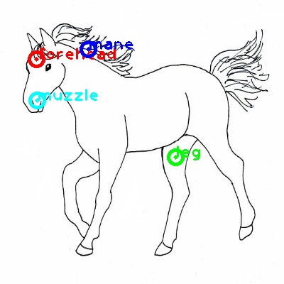horse_0005_dipart10.png