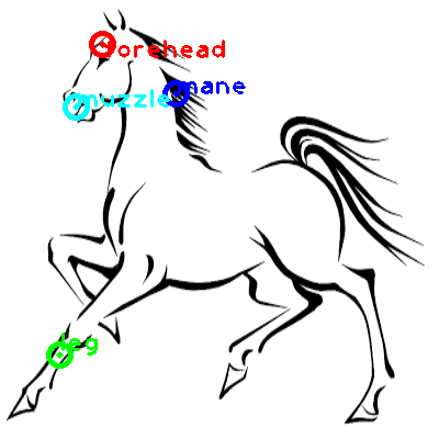 horse_0006_dipart10.png