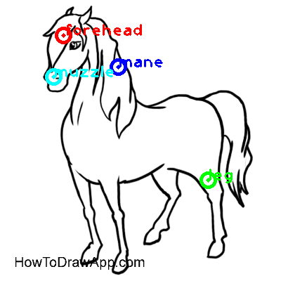 horse_0009_dipart10.png