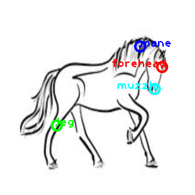 horse_0015_dipart10.png
