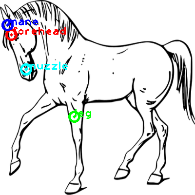 horse_0017_dipart10.png