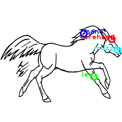 horse_0020_dipart10.png