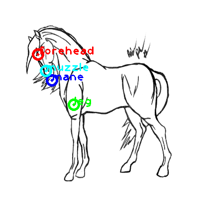 horse_0022_dipart10.png